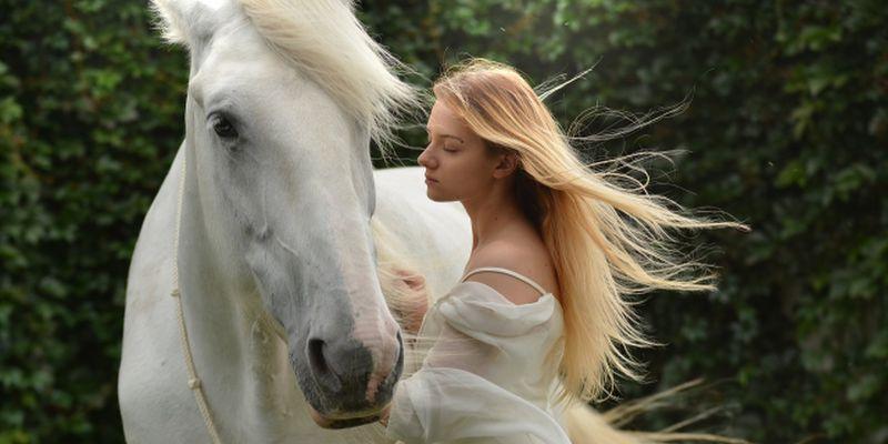 白馬と美女のイメージ